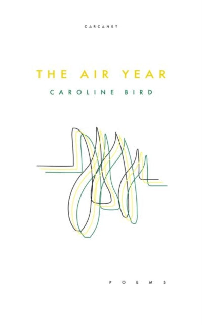 The Air Year by Caroline Bird