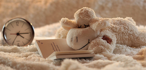 A stuffed toy lamb rests on an open book, a cozy blanket beneath him. In the background is a clock - he's making time for inspiration!