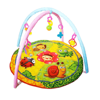 Activity Playmat Gym