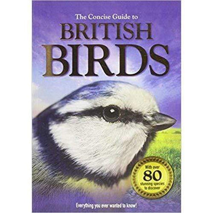 Concise Guide To British Birds Snatcher Online Shopping South Africa