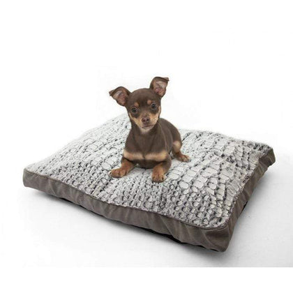 Deluxe Pet Day Bed Medium Snatcher Online Shopping South Africa
