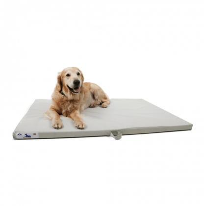 Dog-O-Pedic Hush Puppy Memory Foam Mattress Snatcher Online Shopping South Africa