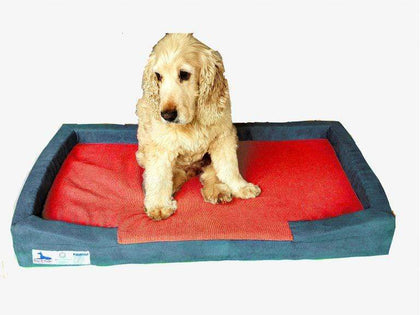 Dog-O-Pedic Throne Memory Foam Orthopedic Mattress Snatcher Online Shopping South Africa