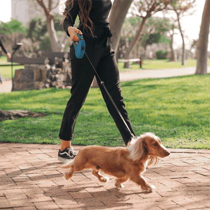 Eco Retractable Pet Leash Snatcher Online Shopping South Africa