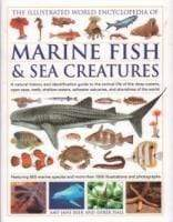 Illustrated World Encyclopedia Of Marine Fish And Sea Creatures Snatcher Online Shopping South Africa