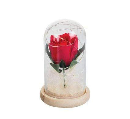 Orn Occasion Love Rose Light 12cm Snatcher Online Shopping South Africa
