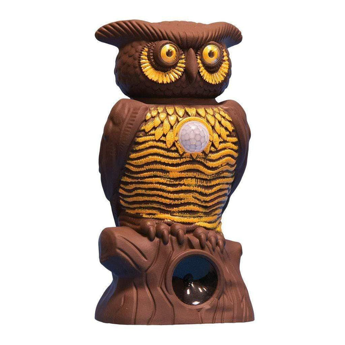Owl Alert - Pest Control Snatcher Online Shopping South Africa