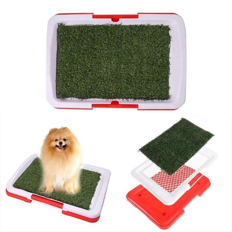 Puppy Potty Pads Small Snatcher Online Shopping South Africa