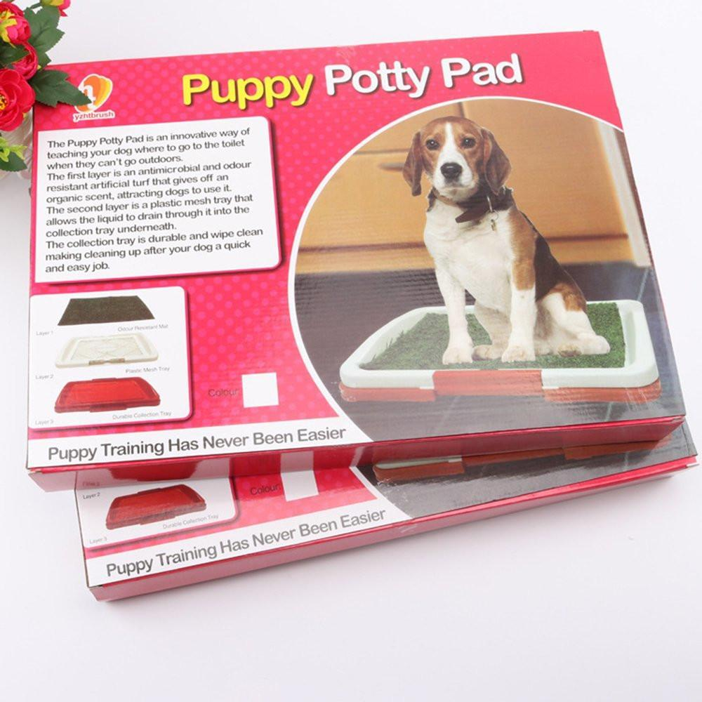 Puppy Potty Pads Snatcher Online Shopping South Africa