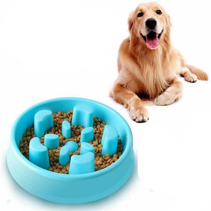 Slow Feeder Pet Bowl Snatcher Online Shopping South Africa