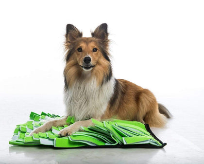 Snuffle Mats Snatcher Online Shopping South Africa