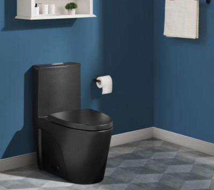 Elongated Black Water Closet