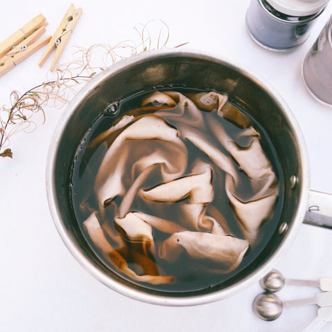 Dyeing process - ~Projectplantbase