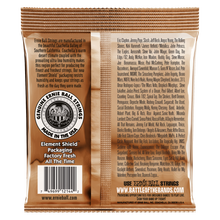 Load image into Gallery viewer, Ernie Ball Earthwood Medium Phosphor Bronze Acoustic Guitar Strings
