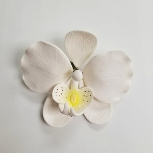 Orchid 3.5""