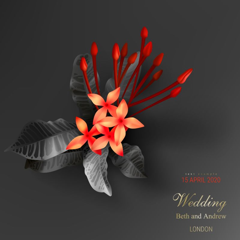 Tropical black leaves, scarlet buds on dark  #210