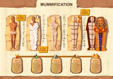 Mummy creation cartoon vector infographic illustration. Stages  #94