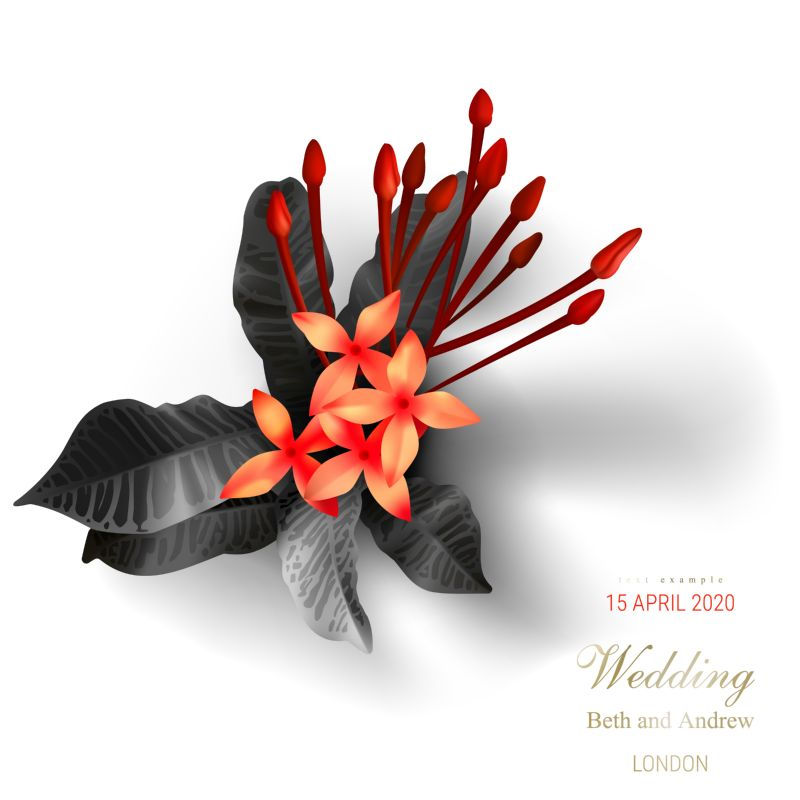 Tropical black leaves, scarlet buds on white  #74