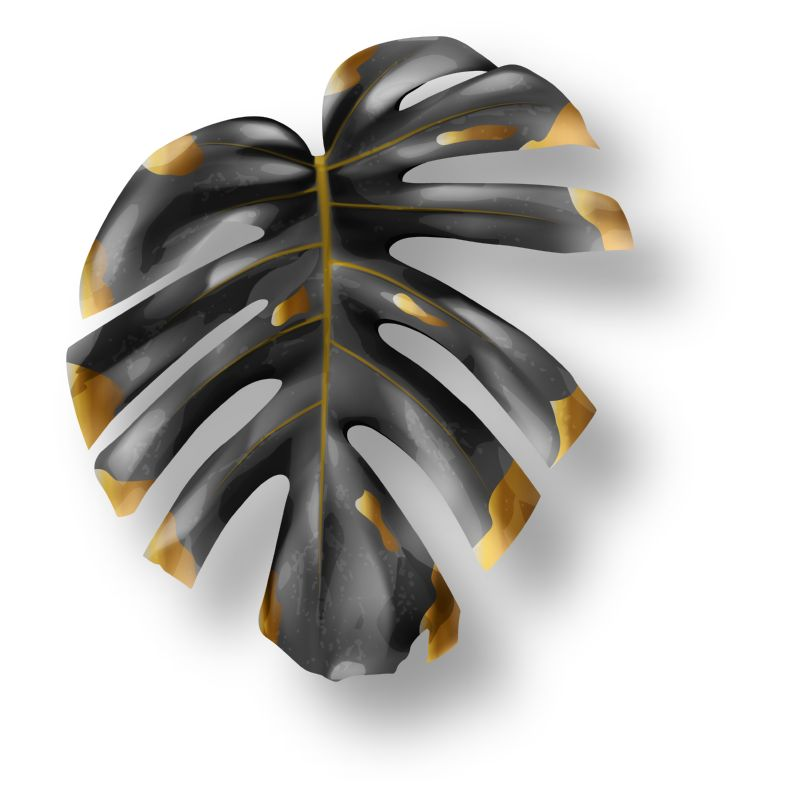 Tropical black and gold monstera leaf on  #924