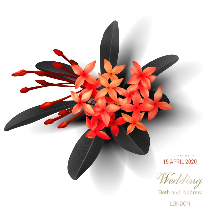 Tropical black leaves, exotic red flower on  #163