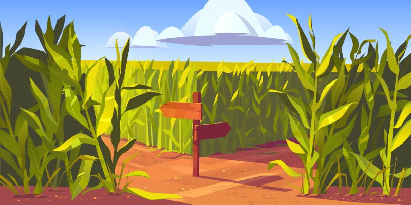 Free vector. Green maize plants and sandy road between  #537