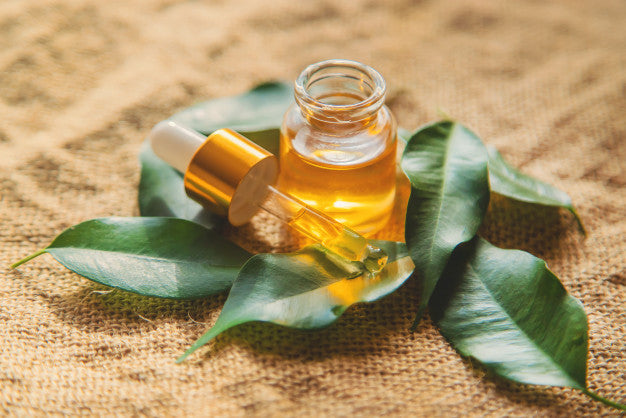 Pure Tea Tree Oil | Nubian Botanicals