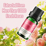 Load image into Gallery viewer, Fresh Rose Cholesterol Control Essential Oil