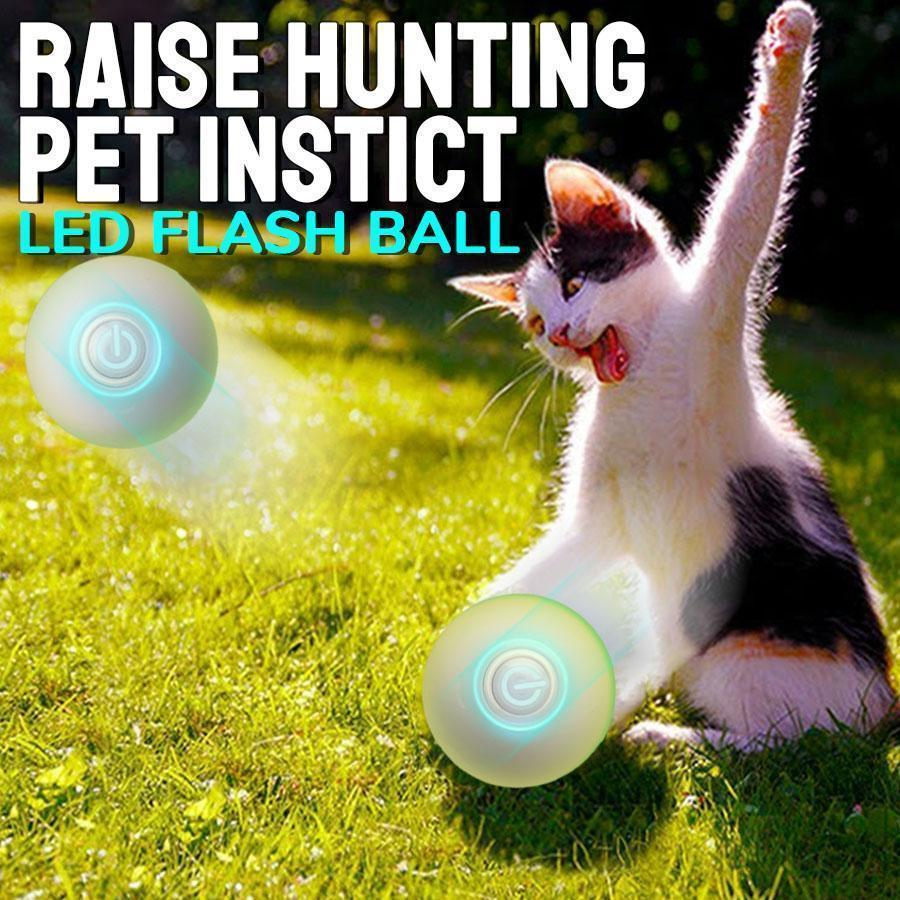 Interactive Cat Ball Toy