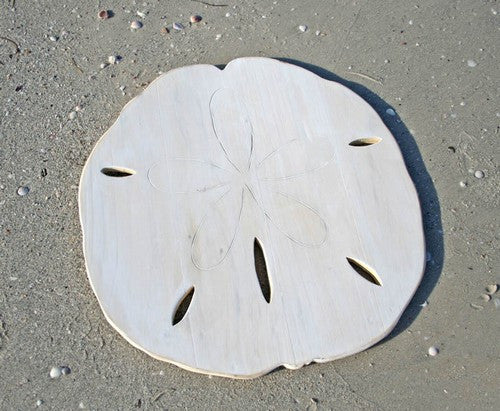 Wooden Sand Dollar Silhouette