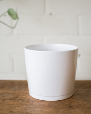 Load image into Gallery viewer, Alaska Pot - Blanc - Vessels - STUDIO FOLIAGE