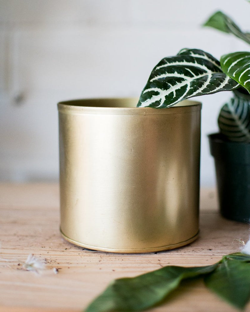 Load image into Gallery viewer, Bryant Cache pot - Vessels - STUDIO FOLIAGE