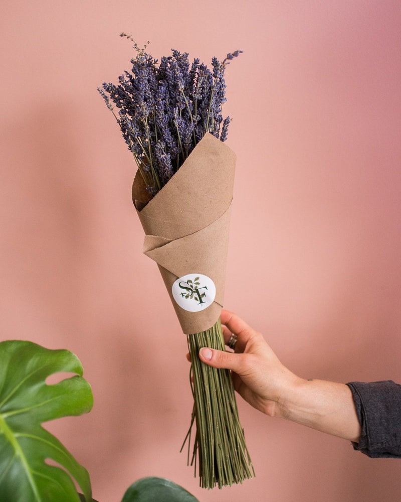 Dried Lavender Bundles - Bouquets - STUDIO FOLIAGE
