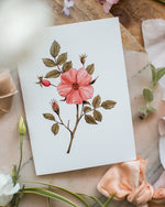 Églantier - Joannie Houle - Greeting Cards - STUDIO FOLIAGE