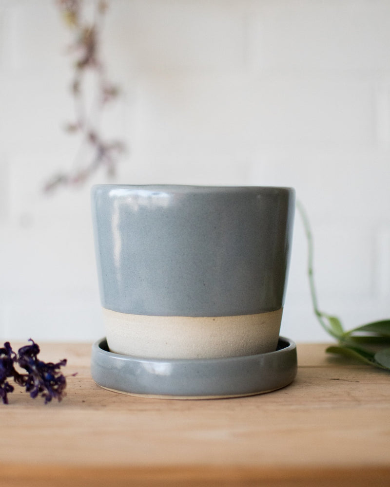 Planter& Saucer - Eucalyptus on Cream - Studio Laroche - Vessels - STUDIO FOLIAGE