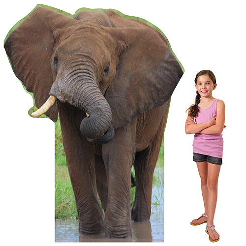 6 ft. African Elephant Standee