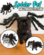 Load image into Gallery viewer, Spider Pet Halloween Costume LuminousUnicorn