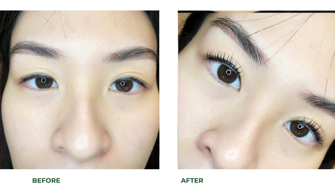 Lash Lift and Tint The First Refresh