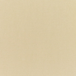 Canvas Antique Beige