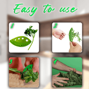 Vegetable Leaf Stripper summertwinkle