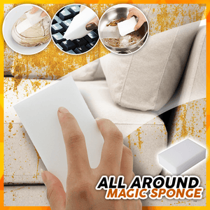 Ultimate All Around Sponge (Set of 10pcs)