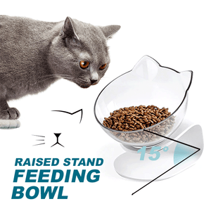 Raised Stand Feeding Bowl summertwinkle sigle