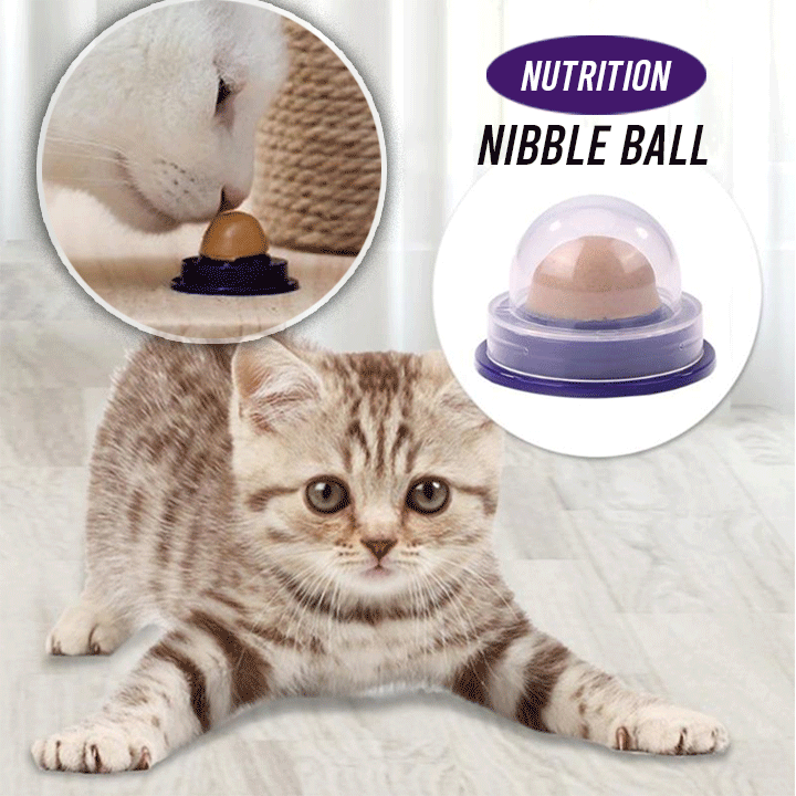 Cat Treat Nutrition Ball summertwinkle