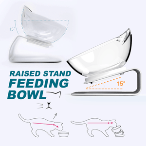 Raised Stand Feeding Bowl summertwinkle