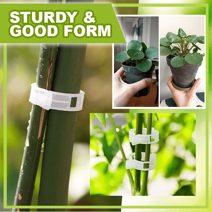 Plant Support Clips (50pcs) summertwinkle