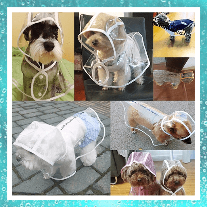 Pet Raincoat summertwinkle