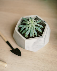 Hexagon Planter (7 Colors)