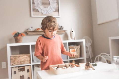 Wooden Toys:  Sparking Imaginations |imooore
