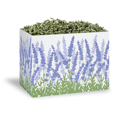 White gift box decorated with lavender plants in front of black background