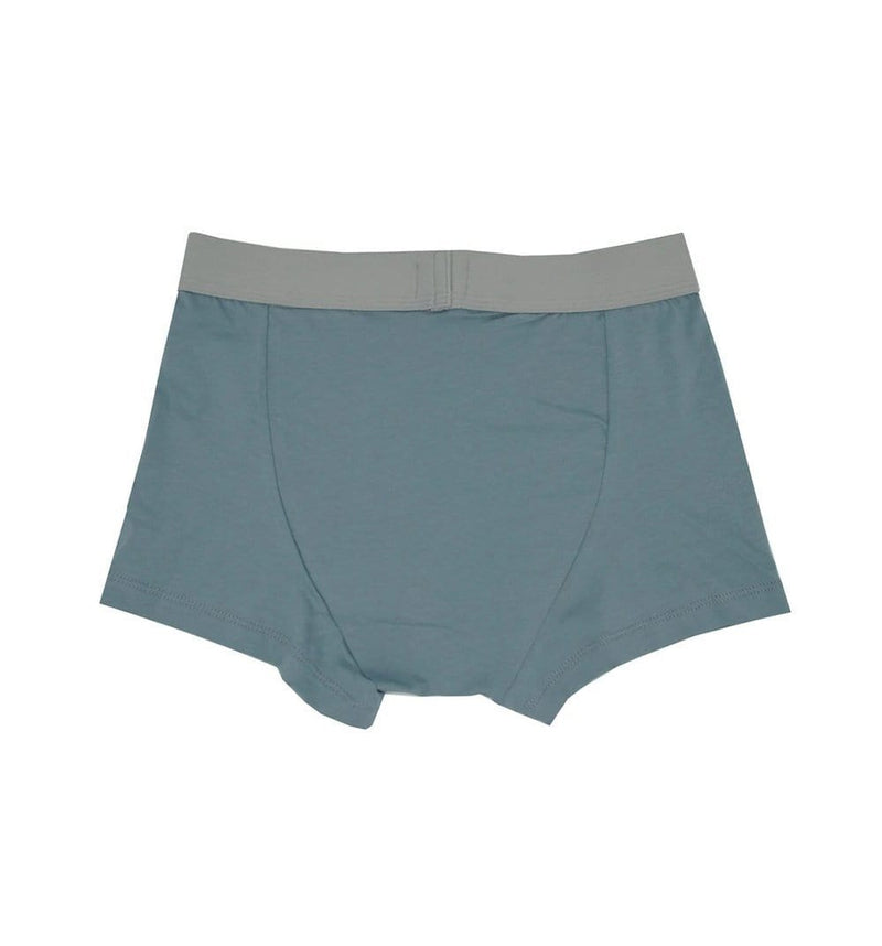 Organic Petrol Blue Trunks