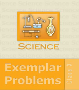 NCERT Exemplar Problems Science for Class 10 - Latest edition as per NCERT/CBSE